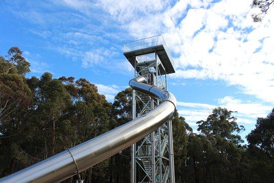 Manjimup Heritage Park: Giant Slide