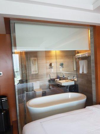 Grand Skylight International Hotel Shenzhen Guanlan Avenue