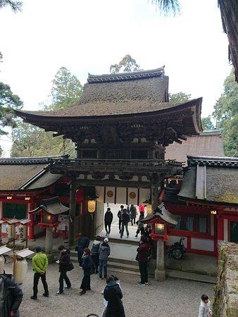 Isonokami Jingu: DSC_0174_large.jpg