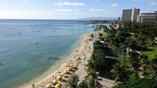 Waikiki Shore: We watched the sun set every night from our balcony