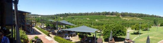 Pickering Brook, Australia: View from restaurant deck