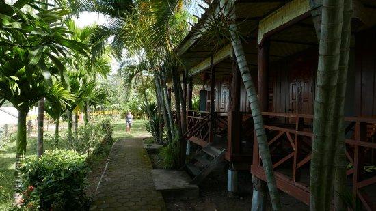 Pan's Residence: les bungalows face au Mékong