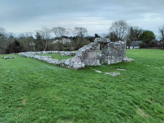 Nendrum Monastic Site: Monastery remains