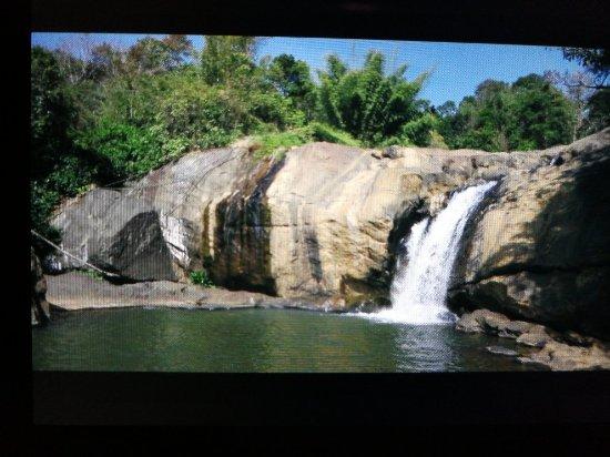 Attukal Waterfalls: TA_IMG_20180102_195258_large.jpg