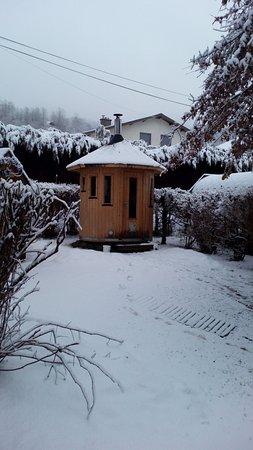 Saint-Jacques-des-Blats, France : Sauna Finlandais