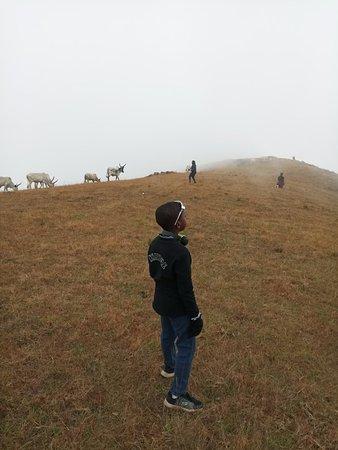 Obudu, نيجيريا: IMG_20171224_143509_large.jpg