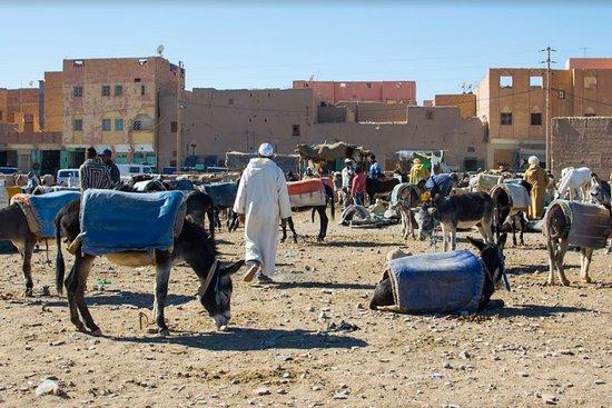 Rissani Market: souk, parcheggio per gli asini