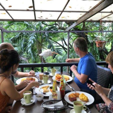 Menu Card Picture Of Hornbill Restaurant And Cafe Kuala Lumpur Tripadvisor