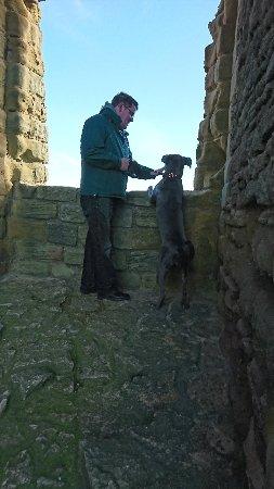Scarborough Castle: DSC_0040_large.jpg