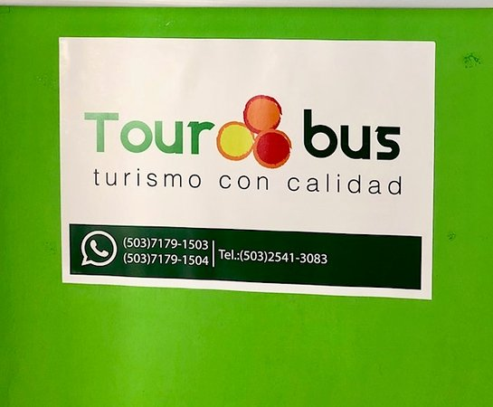 Tour Bus El Salvador