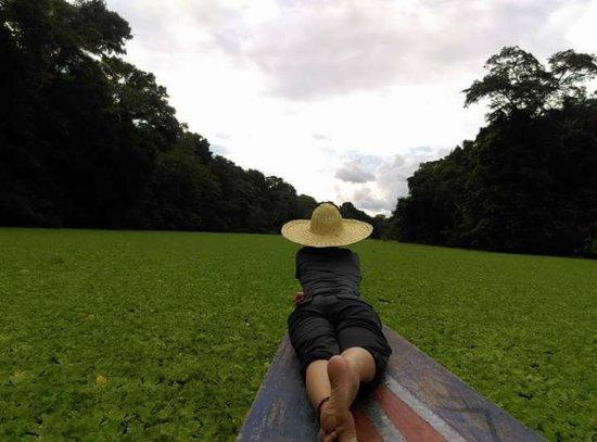 Amazon Experience: Pacaya Samiria-amazon Lodge- Jr. Nauta 256 Iquitos, Peru