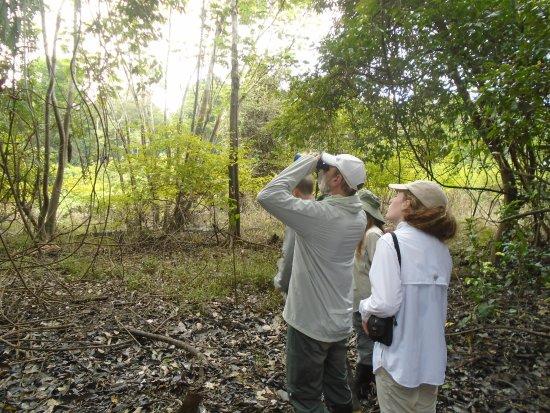 Pacaya Samiria- Amazon Experience - Jr.Nuata 256- Iquitos, Peru