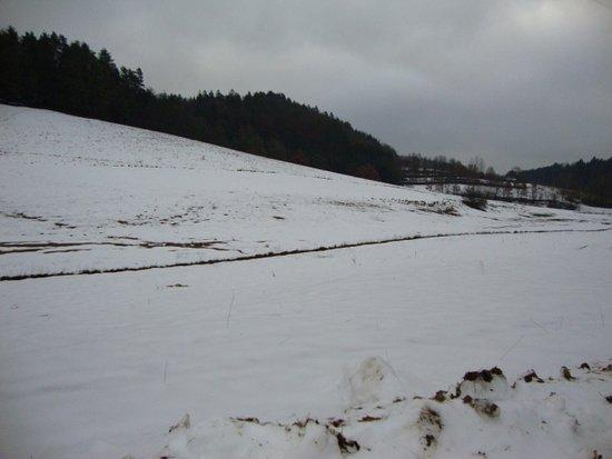 Winter meadows Thurmansbang