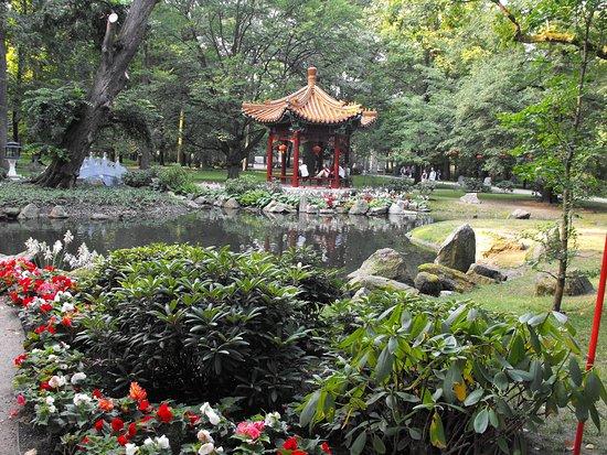 Foto de parque lazienki varsovia palacio de la isla for Chino el jardin