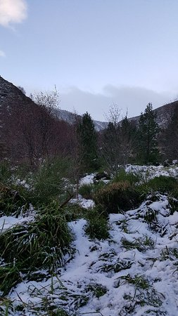Badenoch and Strathspey, UK: 20180102_150445_large.jpg