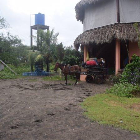 Poneloya, Nicarágua: photo7.jpg