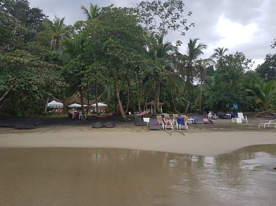 Cocles, Costa Rica: 20180102_122236_large.jpg