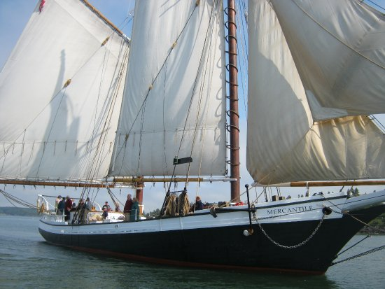 Maine Windjammer Cruises -Sally Harbor