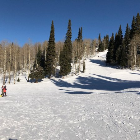 Alta, WY: Green run at Targhee