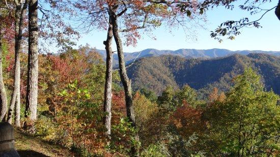 Snowbird Mountain Lodge: View from deck