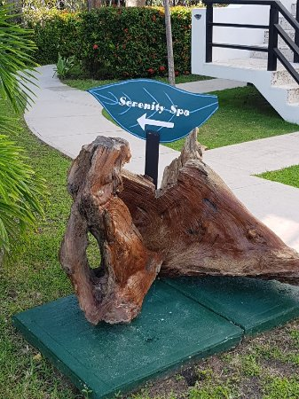 Las Terrazas Resort: 20180102_111254_large.jpg