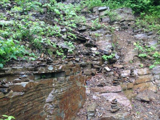 Lye Brook Falls: Trail