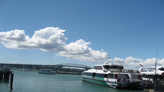 Pont du port d'Auckland : サイロパークからみえるハーバーブリッジ