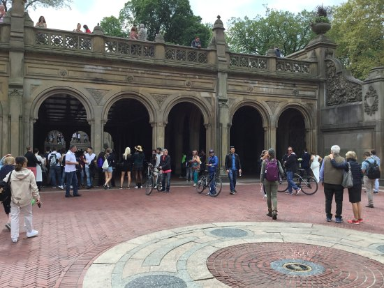 Central Park Bike Tours : Within Central Park