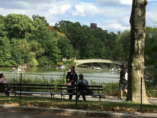 Central Park Bike Tours : Bow Bridge in Central Park
