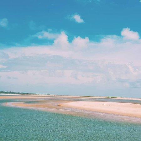 Ilha dos Namorados: o rio alaga a croa na maré baixa e forma lagoas e micro-mangues