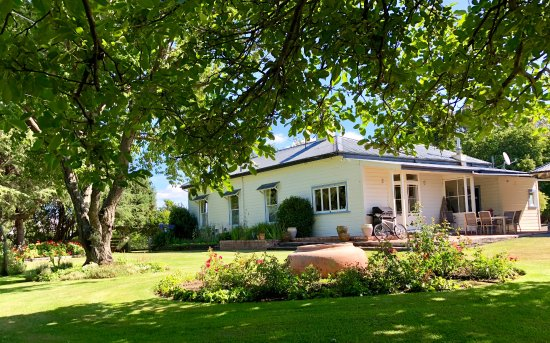 St Leonards Vineyard Cottages: The backside of the main house - the fruit trees are awesome