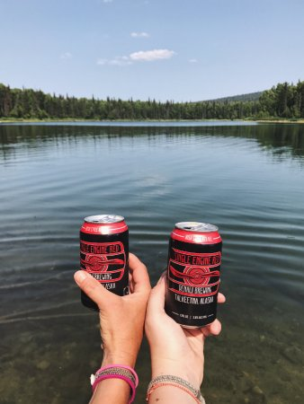 Denali Brewing Company : 6-pack to go!