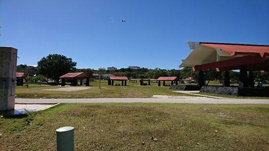 Ypao Beach Park: DSC_0240_large.jpg