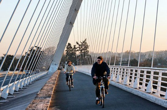 3-Hour Strasbourg and Kehl Bike Tour...