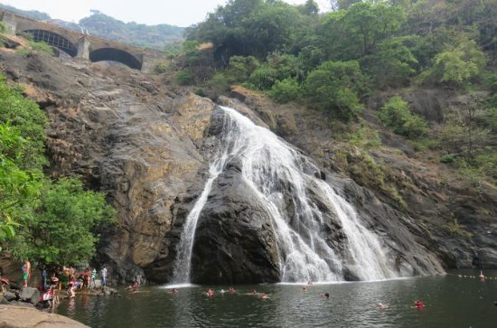 Full-Day Private Tour to Dudhsagar...