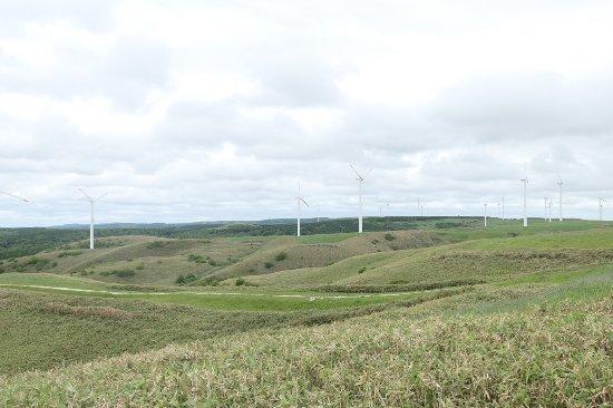 Cape Soya Wind Farm