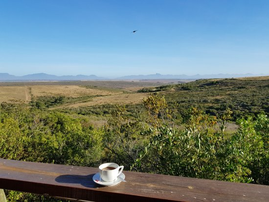 Garden Route Game Lodge: View from Dinning area