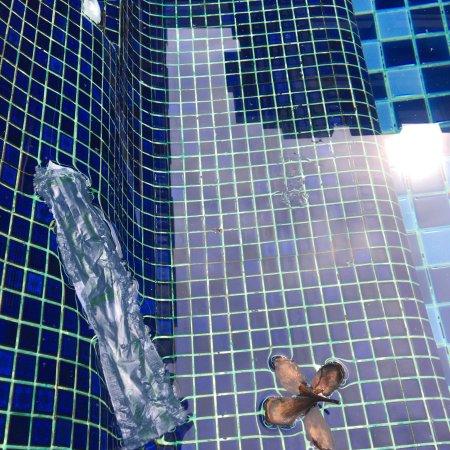 Andakira Hotel: photo0.jpg