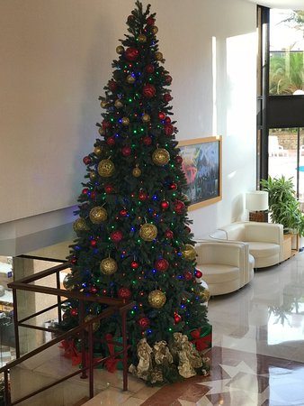 MUR Hotel Neptuno Gran Canaria: Weihnachtsbaum im Eingang