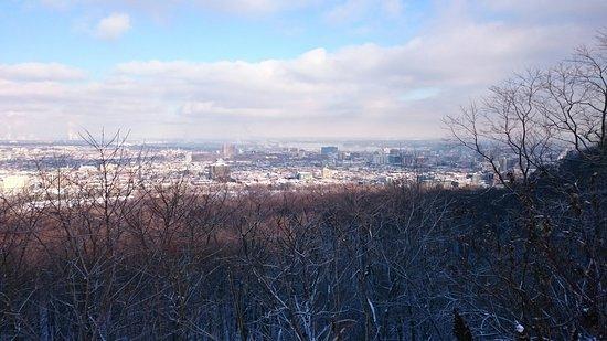 Plateau Mont-Royal : DSC_0739_large.jpg