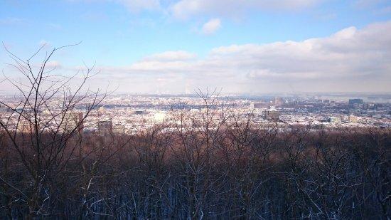Plateau Mont-Royal : DSC_0740_large.jpg