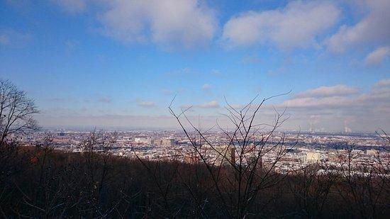 Plateau Mont-Royal : DSC_0741_large.jpg