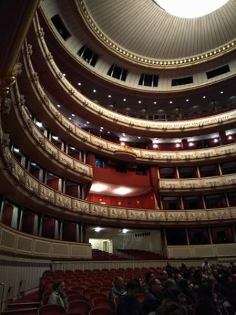 Opera of Vienna Guided Tour : View at the back of the hall.