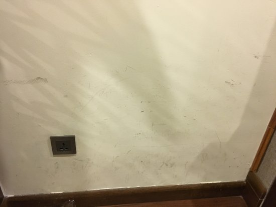 Sapa Legend Hotel & Spa: Stains on the wall
