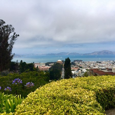 Pacific Heights: Beautiful views of the bay