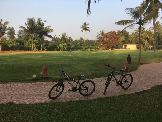 Kenilworth Resort & Spa: Bicycles available to ride inside the property, at an extra charge.