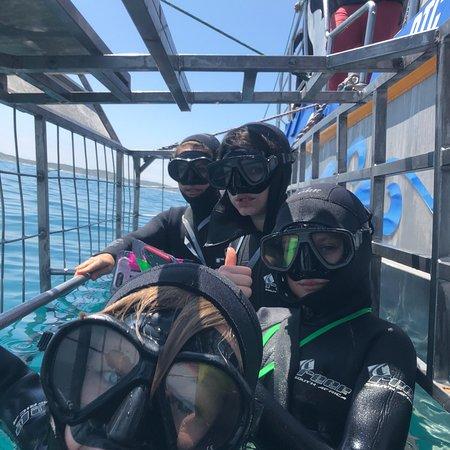 Kleinbaai, South Africa: Marine Dynamics