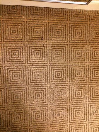 Hyatt Regency O'Hare: Burn Marks on Carpet of non-smoking room