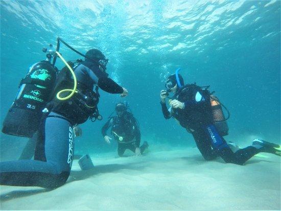 Arrabida Diving