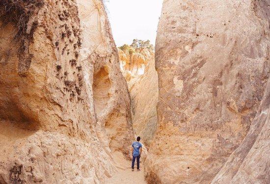 Solana Beach, CA: Hike up Annie's Canyon.